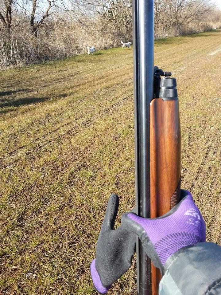 守谷猟友会による西板戸井酪農団地のカラス駆除